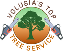 New Smyrna Tree Service